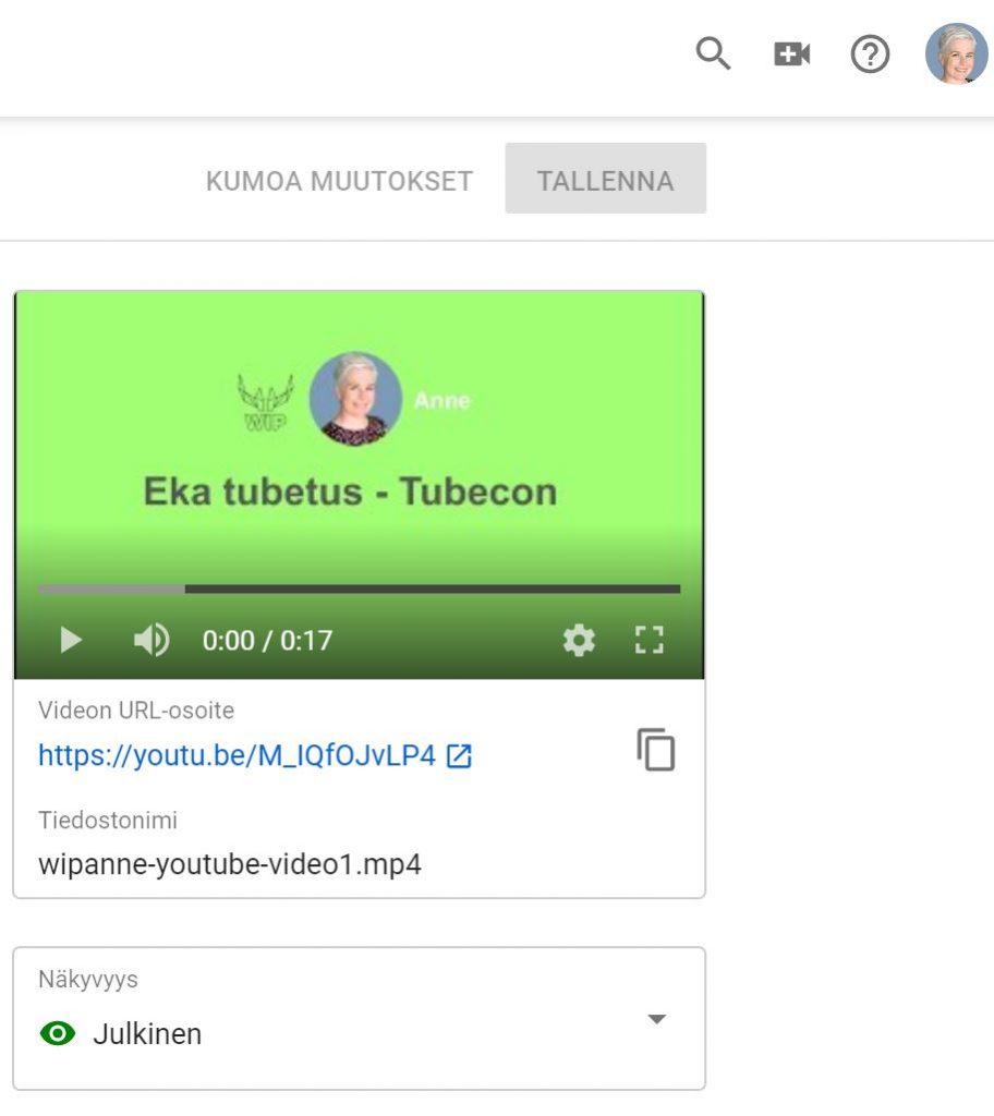 wipanne-youtube-nakyvyys